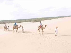 砂漠ラクダ乗る
